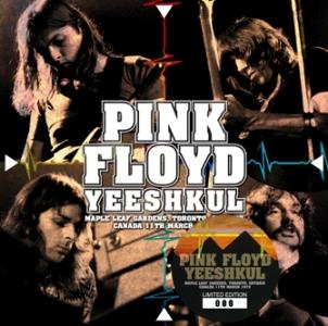 pink_floyd_yeeshkul