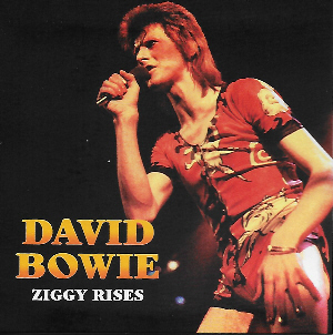 David Bowie - Ziggy Rises
